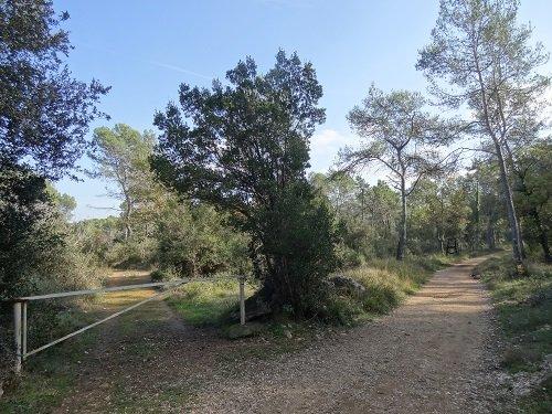 Sur Les Terres De Roquefort